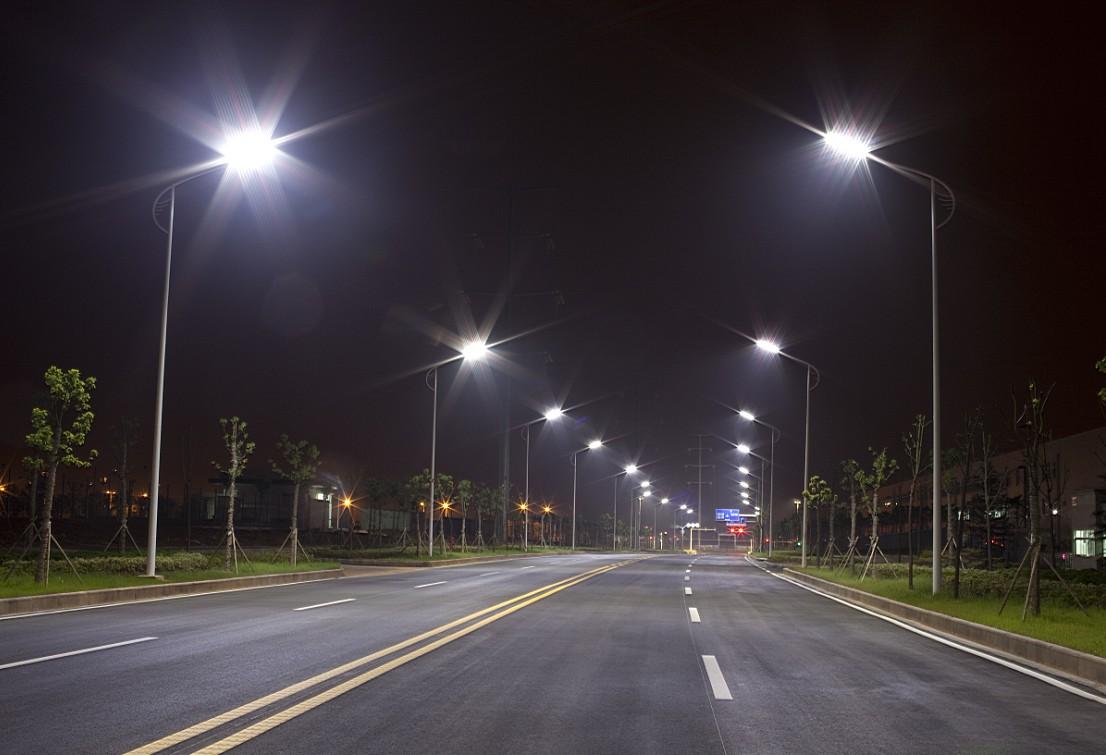 Artificial Lighting And Bats